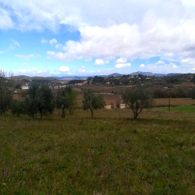 Offres de vente Terrain Clermont-l'Hérault (34800)